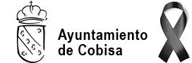 Ayuntamiento de Cobisa